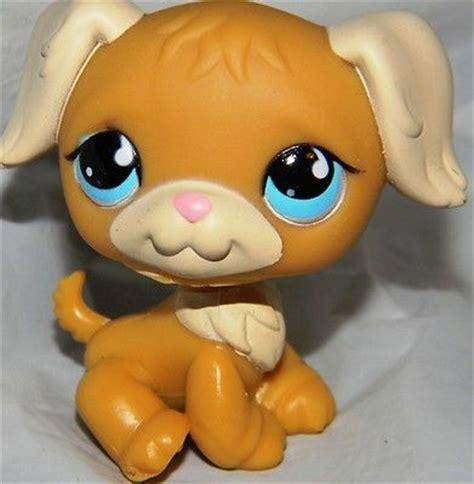 lps golden retriever lps littlest pet shop golden retriever w blue 951 htf littlest pet
