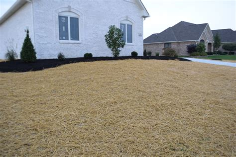 Landscape Fabric Grass Seed Straw Bales Indianapolis Mulch Mccarty Mulch