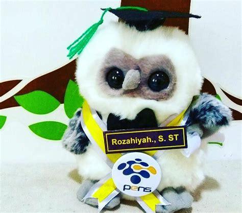 Boneka Wisuda Owl owl boneka wisuda pens kado wisudaku