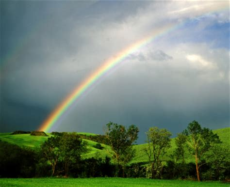 rainbow light s one side effects rainbow pictures howstuffworks