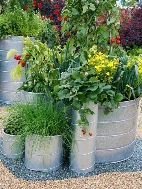 galvanized garden containers 10 ideas for using large garden containers landscaping