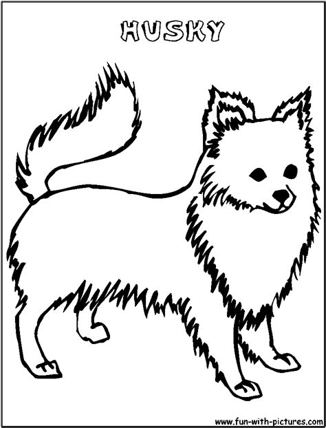 coloring pictures of huskies husky coloring page