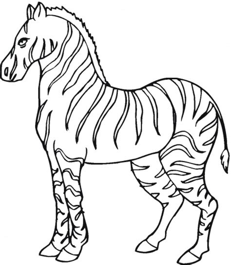 free animal wild zebra coloring sheet to print