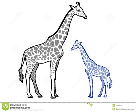 pattern giraffe drawing giraffe outlines stock vector illustration of cute icon