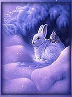 mobile funblog bunnys  easter  pinterest screensaver gifs  bunny