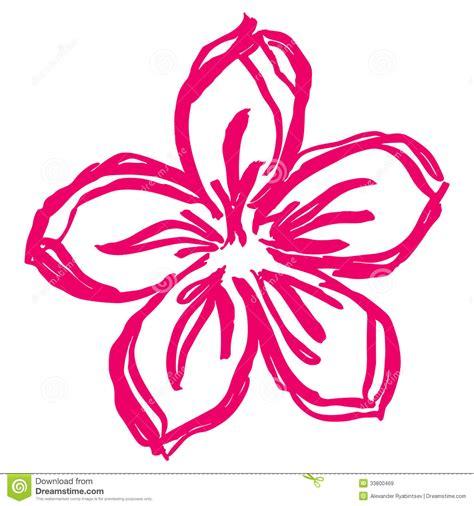 imagenes de flores dibujadas hand drawn spring pink flower royalty free stock images