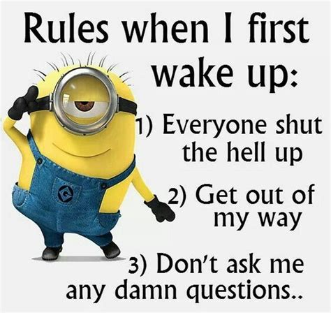 funny minions images  funny quotes  pm
