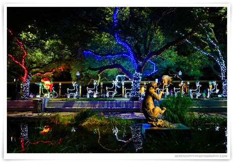 Zoo Of Lights Houston Image Gallery Houston Zoo Lights Zoo Lights 2015 Houston