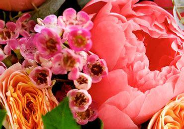 au comptoir des fleurs home au comptoir des fleurs