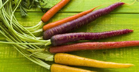 are carrots a root vegetable the ultimate guide to cooking root vegetables you d