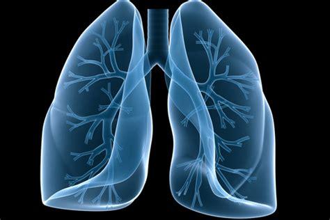 Cctv Lung Polmone