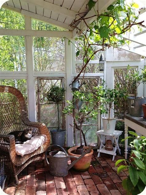 greenhouse sunroom pin by cirillo mucig on sunrooms and greenhouses
