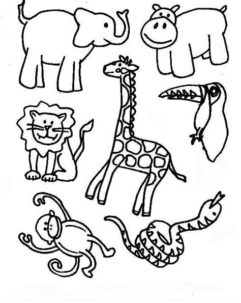 Rainforest Animals Coloring Pages by Coloring Pages Of Rainforest Animals Coloring Home