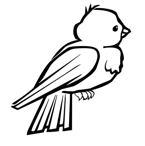 doctor bird coloring page bird coloring pages dr odd coloring page of bird in