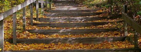 Faire Des Marches Dans Un Jardin by Faire Un Escalier De Jardin En Rondins De Bois