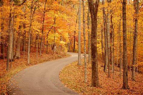 in fall my favorite running blogs spreading miles of love