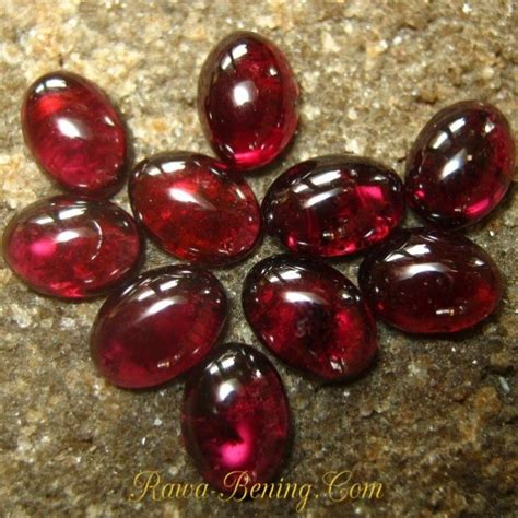Batu Rhodolite Garnet grosir 10 pcs batu permata rhodolite garnet oval cabochon