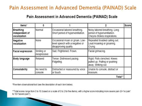 enhancing the quality of in advanced dementia books pin assessment in advanced dementia painad on