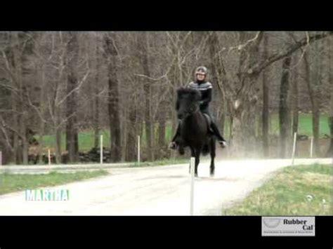 Martha Stewart Rides A Stallion by Stall Mats Featured On Martha Stewart Show
