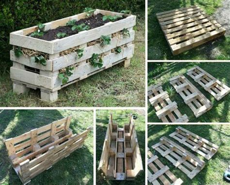 Raised Strawberry Planters by Raised Garden Bed