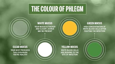 phlegm mucus color shows the health condition steemit