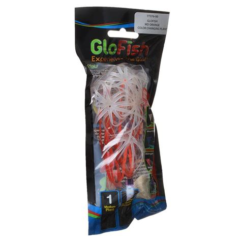 glofish colors glofish glofish color changing aquarium plant orange