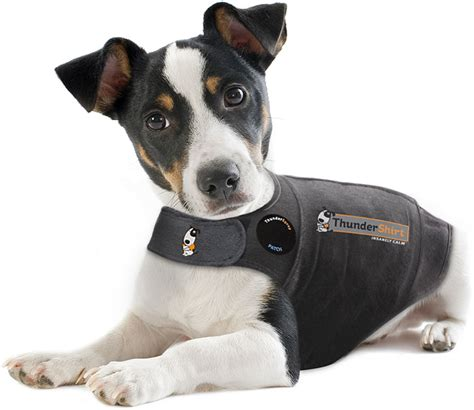 thundershirts for dogs do thundershirts work arbor animal hospital