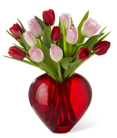 tulips or roses for valentines s day tulips in a shape vase at ollie s
