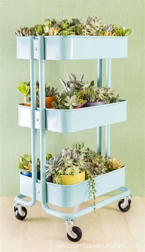 ikea raskog rolling cart how to plant a succulent garden in an ikea cart