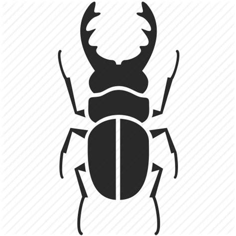 Beetle, bug, hercules beetle, horn beetle, insect, rhino ...
