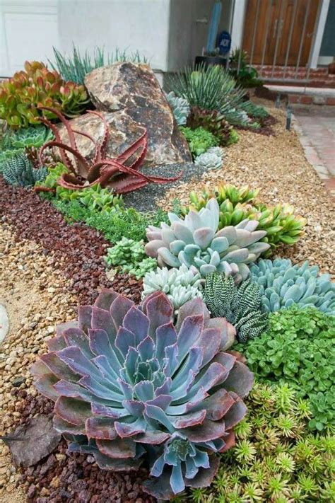 Where To Buy Planters Near Me Best 25 Succulent Rock Garden Ideas Only On