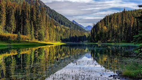 imagenes sorprendentes naturaleza banco de im 193 genes los paisajes de la naturaleza m 225 s