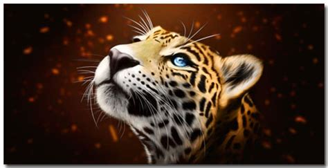 jaguar themes for windows 7 windows 7 jaguar theme featuring 10 most awesome jaguar