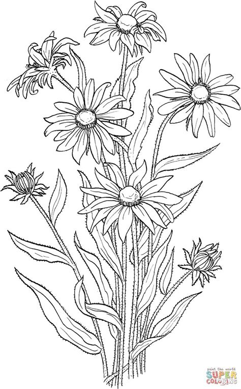 coloring pictures of wildflowers printable wildflower coloring pages coloring page for kids