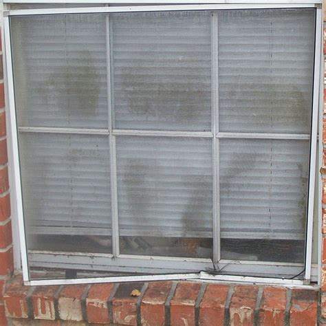 Apartment Windows Mold Current Photos Toxic Mold Infested Jefferson Lakes