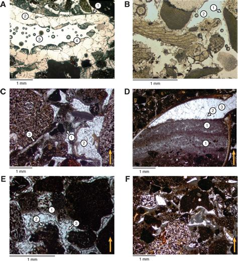 sparite thin section image gallery sparite