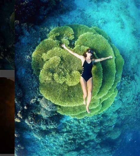 chelsea yamase fresh face chelsea yamase world swimsuit