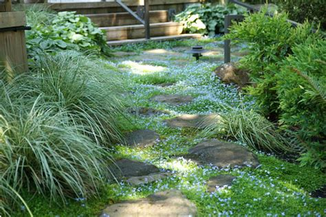 Patio Ground Cover Ideas by Home Gardening In Spaces