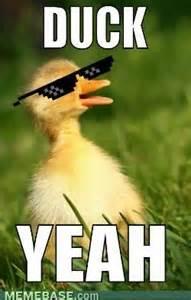 Fuck Ya Meme - duck yeah funny meme image for whatsapp