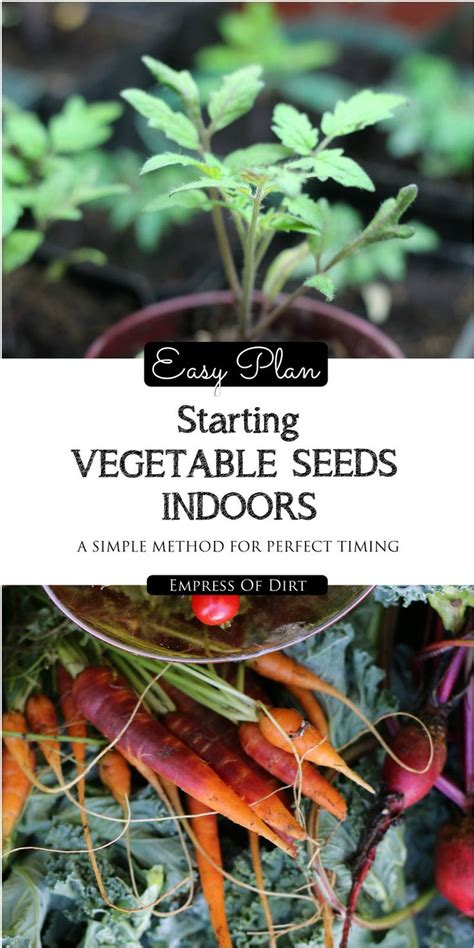 91 Best Images About Indoor Nature On Pinterest What Do You Need To Start A Vegetable Garden