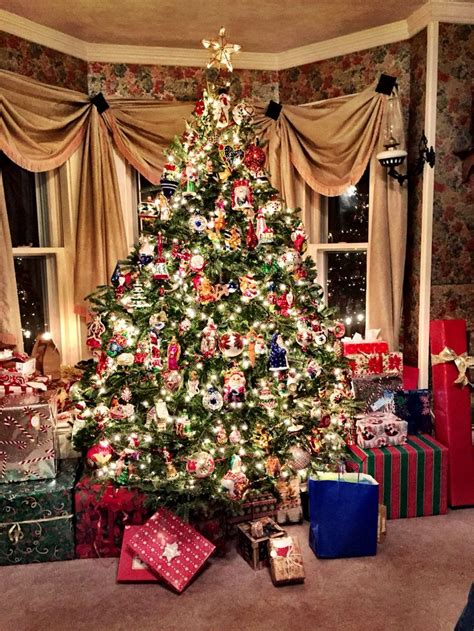 christopher the tree 2790 best images on time
