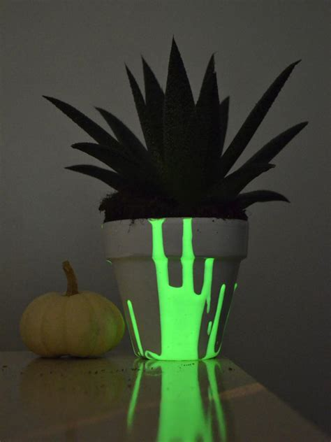 Glowing Planter Pots by Diy Glow In The Planters Hgtv
