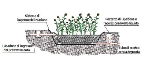 vasche fitodepurazione vasche per fitodepurazione