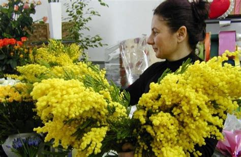 la guerra dei fiori l 8 marzo e la guerra dei fiori ascom 171 no agli abusivi