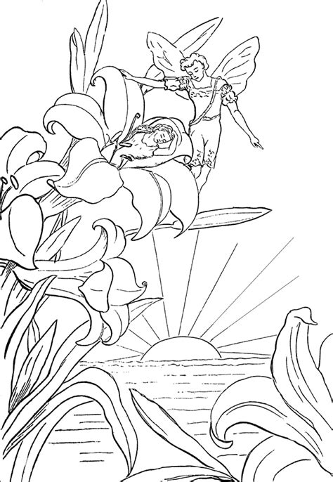 adult fairy coloring page getcoloringpages com