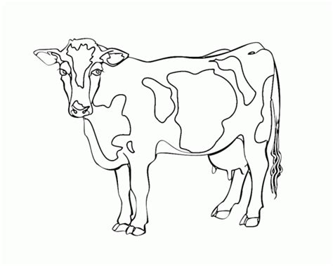 dairy cow coloring page free free dairy cow coloring pages