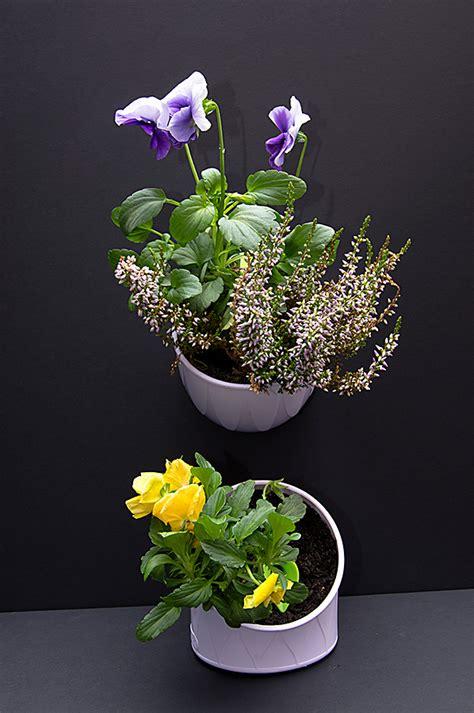 unique plant pots klara gardening klara trio unique plant pots