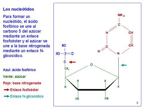 Dna 0 Resumen by Biologia Molecular Resumen De Clases 10 02 2012