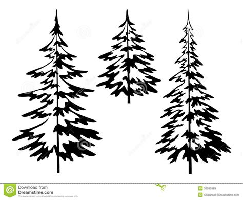 black and white pine tree outline sayings pinterest