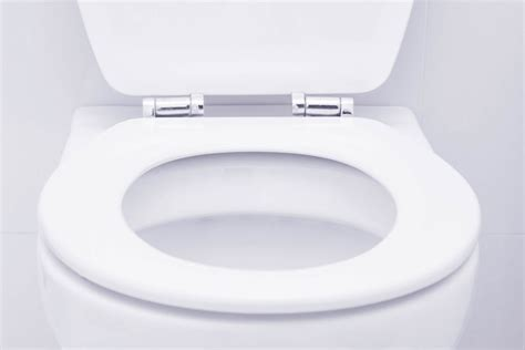 how much do toilet seat covers actually protect you